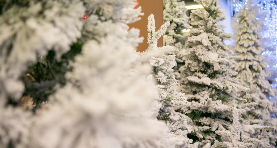 Albero Di Natale Vero Come Farlo Sopravvivere.Alberi Di Natale Artificiali Realistici Verdi Slim Innevati