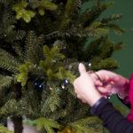 mettere le luci sull'albero