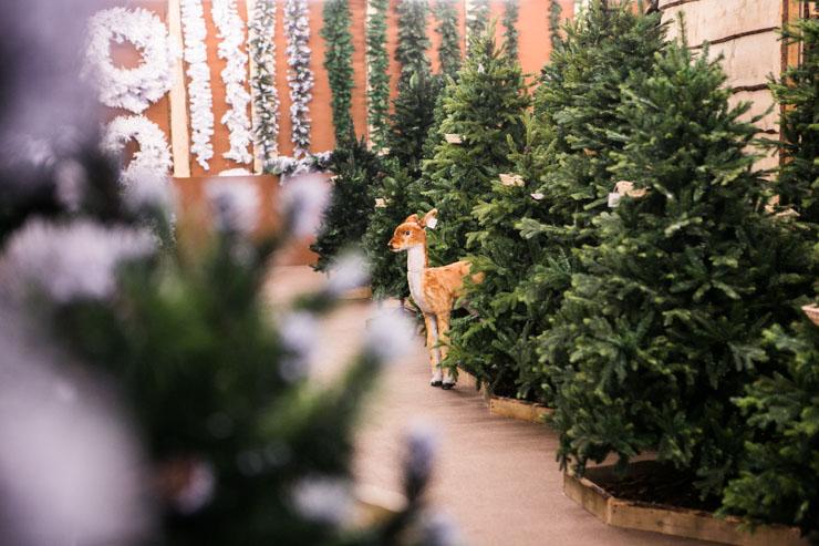 Alberi di Natale: novità 2017