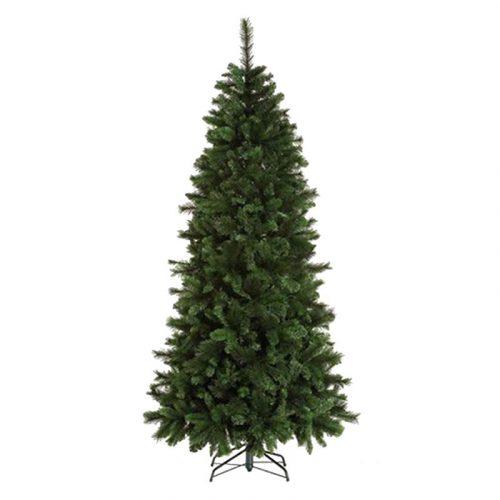 albero slim tofana