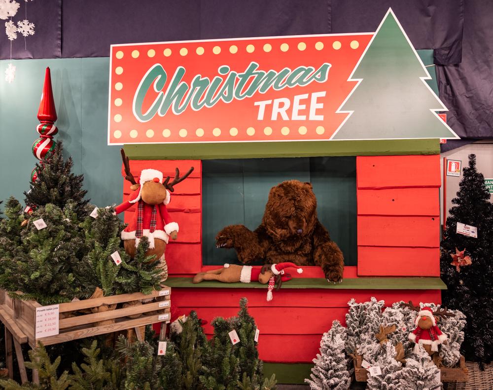 Immagini Alberi Di Natale.Alberi Di Natale Slim I Modelli Piu Venduti Natale Agribrianza